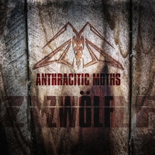 Anthracitic Moths - 'Zwoelf'